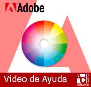 Como revisar tu paleta de colores personalizado en tus programas de Adobe